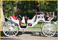 White Vis a Vis by Robert Inc.:  
