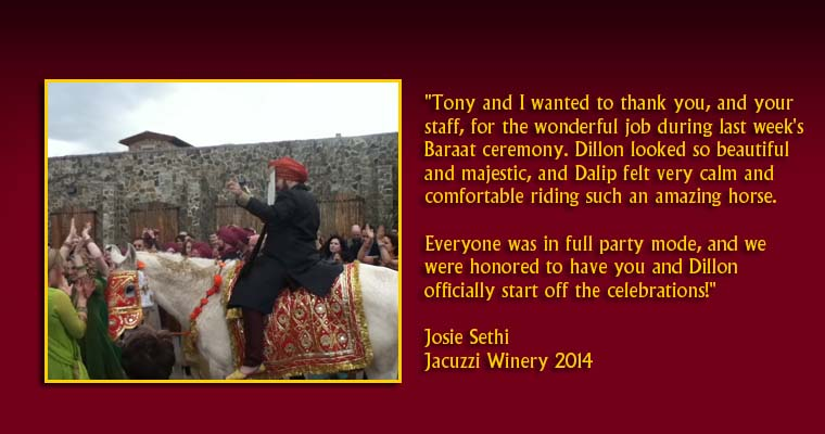 Tony and I wanted to thank you, and your staff, for the wonderful job during last week's Baraat ceremony. Dillon looked so beautiful and majestic, and Dalip felt very calm and comfortable riding such an amazing horse. Everyone was in full party mode, and we were honored to have you and Dillon officially start off the celebrations!