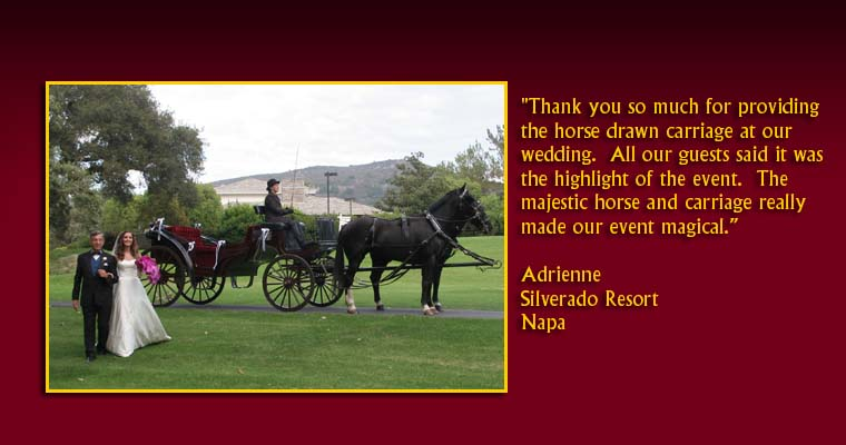 Thank you so much for providing the horse drawn carriage at our wedding.  All our guests said it was the highlight of the event.  The majestic horse and carriage really made our event magical.