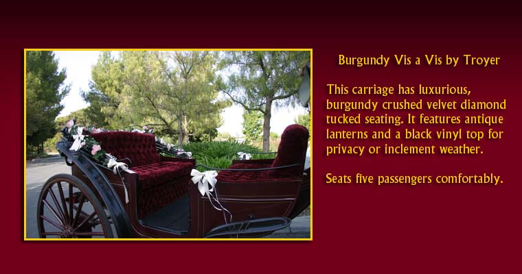 Burgundy Vis a Vis by Troyer:  