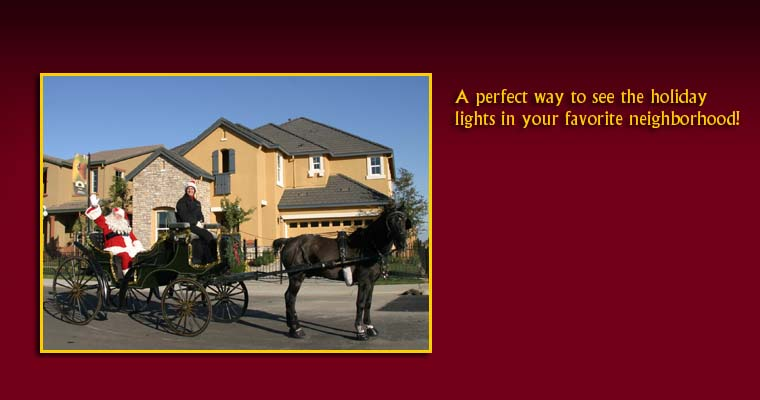 A decorated horse carriage with jingling bells makes for a wonderful Chrismas traditon! 